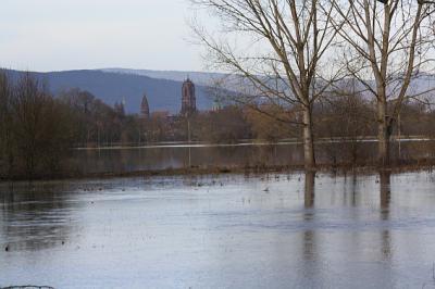 Elsass Karte Zum Ausdrucken.Ubersicht Elsass Alsace 2019 Mensch Natur Umwelt Und