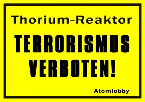 Thorium Flüssigsalzreaktor